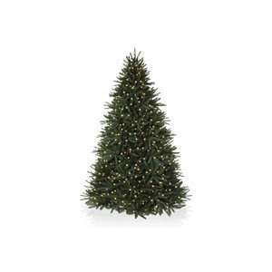 7.5 ft Black Spruce Artificial Christmas Tree with Colored