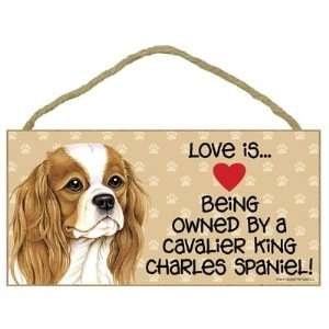 Love is . Being Owned by Cavalier King Charles Spaniel