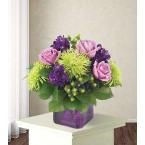 Same Day Flower Delivery Purple Passion  Grocery & Gourmet