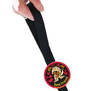 Furbitz Clip on Leash Tag in Best Friend Design