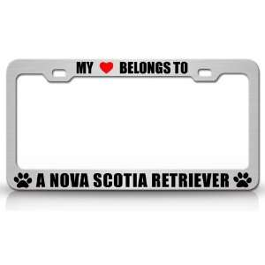 TO A NOVA SCOTIA RETRIEVER Dog Pet Steel Metal Auto License Plate