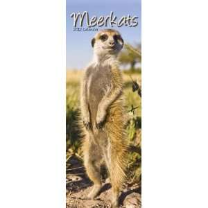 Animal Calendars Meerkats   12 Month Slim   16.4x5.9